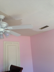 Ceiling Paint During