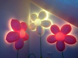 Secret Room After Flower Lights