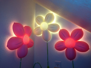 Secret Room After Flower Lights